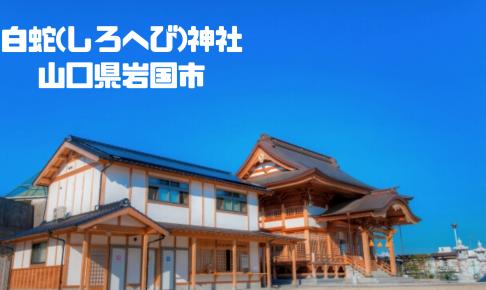 白蛇(しろへび)神社|山口県岩国市|日本【金運スポット】