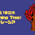 願い事の木(Wishing Tree) セランゴール州セキンチャン マレーシア【金運スポット】